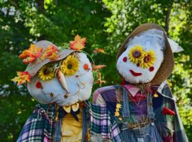 Pick Strawberries & Meet Scarecrows